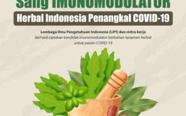 Mengenal Produk Imunomodulator (Penguat Daya Tahan Tubuh) Herbal Asli Indonesia
